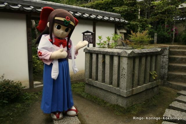 Katsuragi11