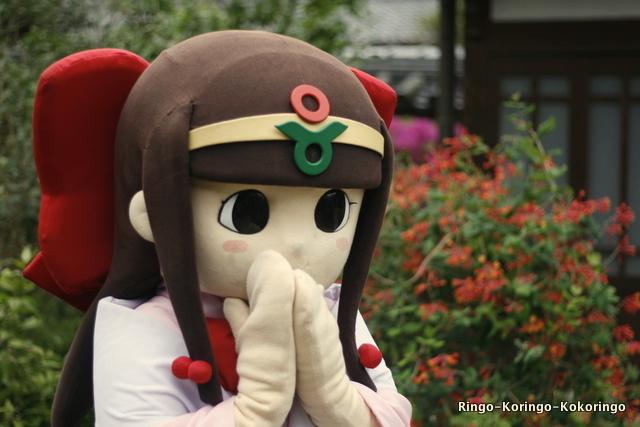 Katsuragi16