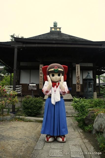 Katsuragi23